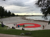 A wreath of 30,000 poppies for ANZAC day.